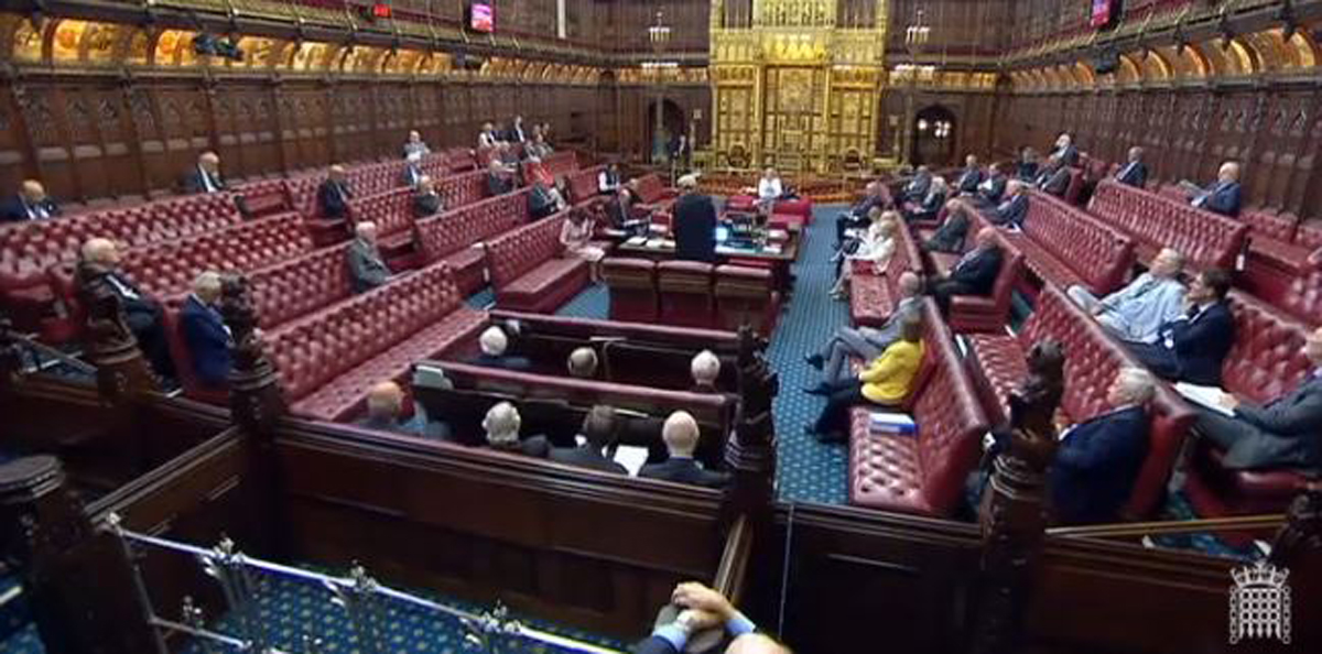 f16c39b4864c The House of Lords debated the proposed ivory bill at the committee stage  on September 10 and 12. Image from parliamentlive.tv.