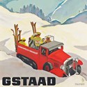 Gstaad, designed by Alex Walter Diggelmann